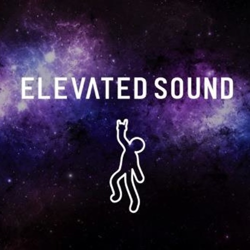 Elevated Sound Recordings's avatar