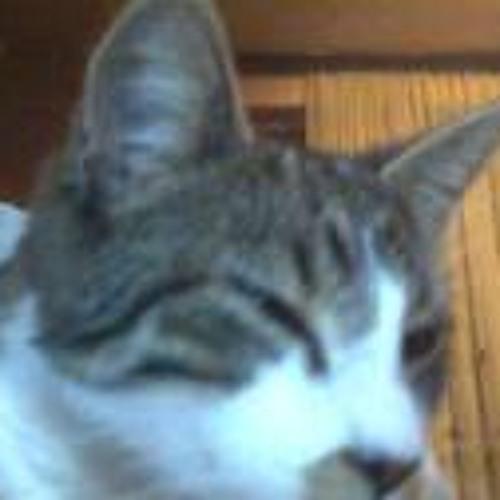 Monster Tom Cat's avatar