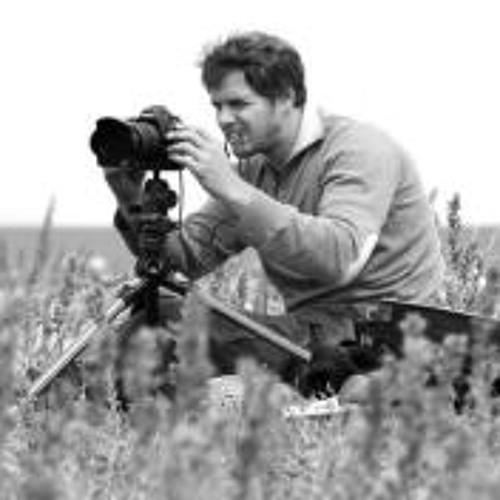 Patrick Mayer 10's avatar