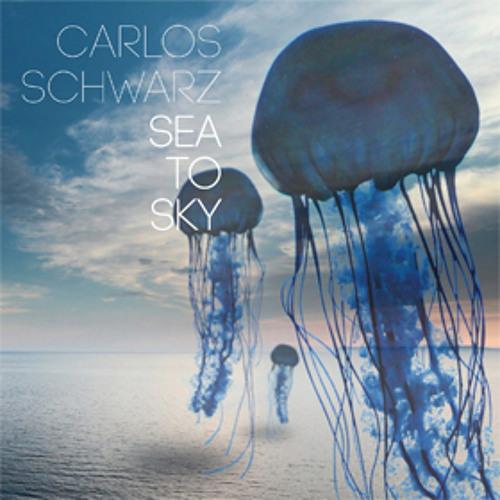 Carlos  Schwarz's avatar