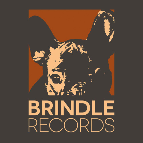 Brindle Records's avatar