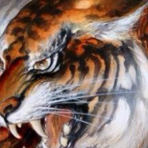 gianni martocci's avatar