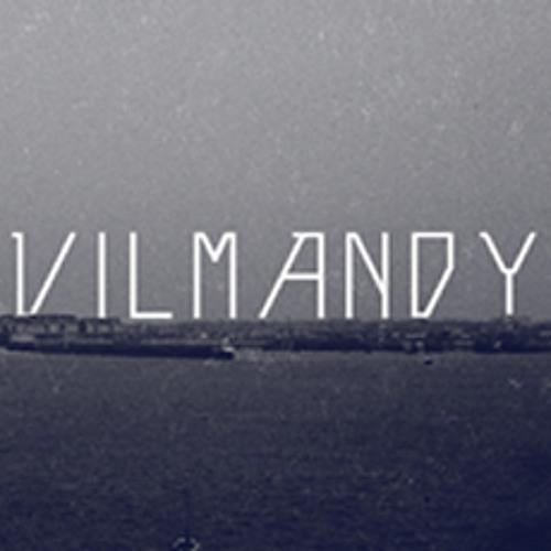 Vilmandy's avatar