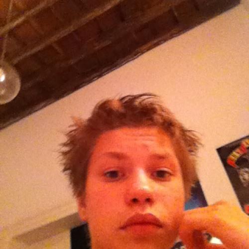 Gust Hoornaert0's avatar