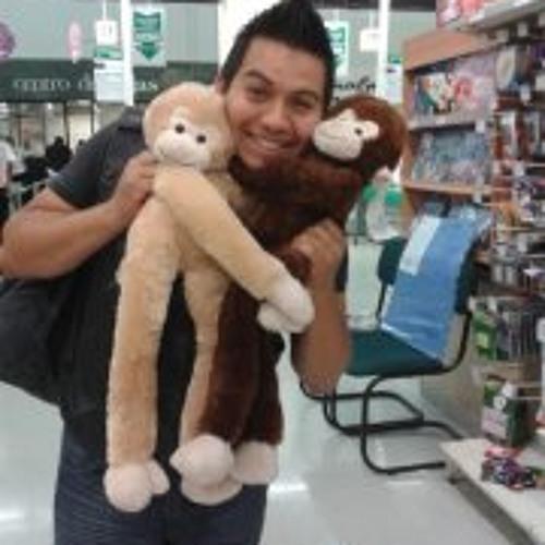 Claudio Valenzuela 8's avatar