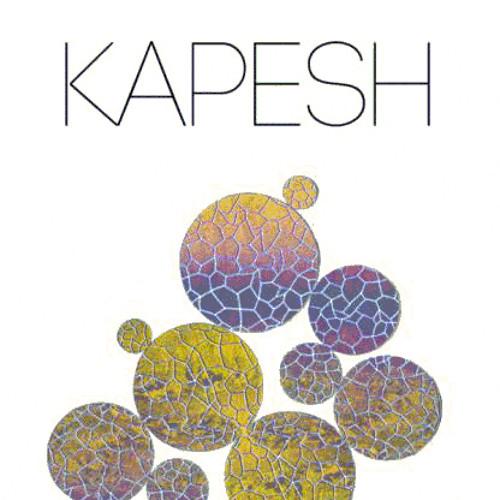 KAPESH's avatar