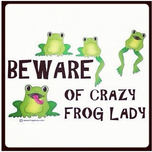 Crazy Frog Lady's avatar
