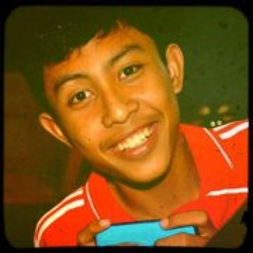 Ageng Wicaksono 1's avatar