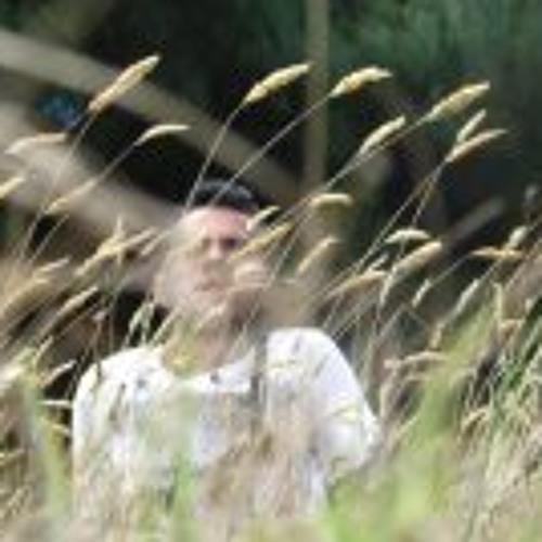 Andres Albahaca's avatar