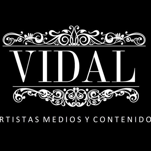Vidal Bookings & Artistic's avatar