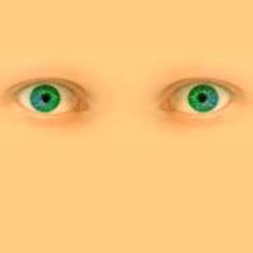 Bas Oosterbaan 1's avatar