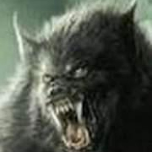 Voodoo The-Intruder's avatar