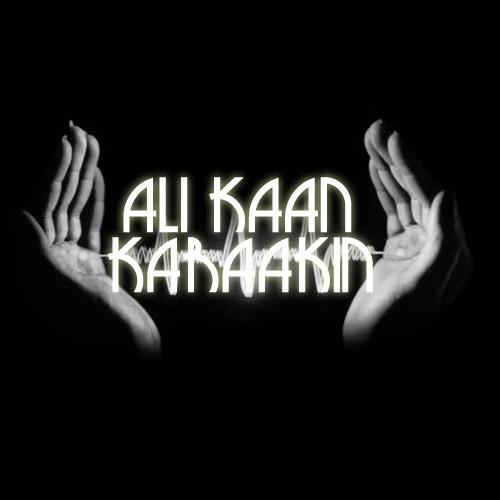 Ali Kaan Karaakın's avatar