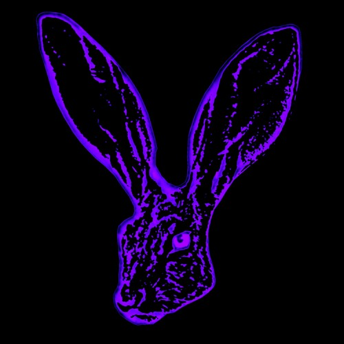 rabbit music's avatar