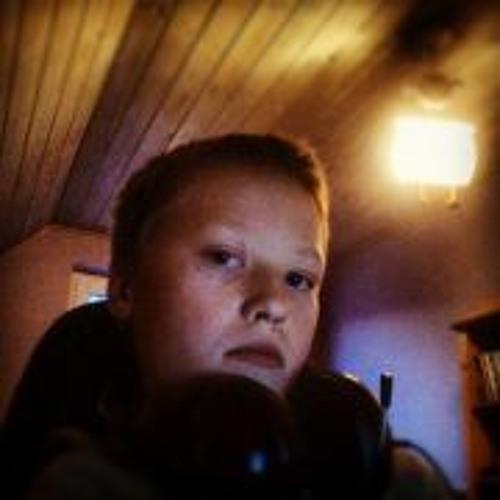 Holger Toft Nielsen's avatar