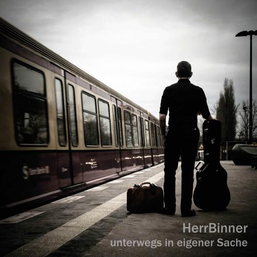 HerrBinner's avatar