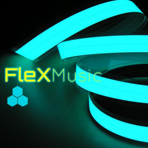 FleX Music's avatar