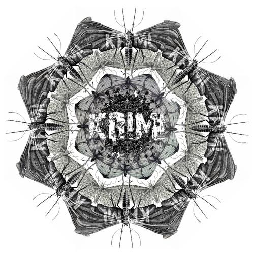 KR1M1's avatar