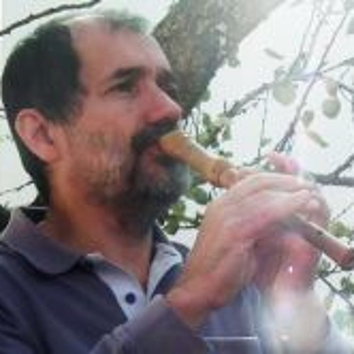 Carlos Albarran 1's avatar