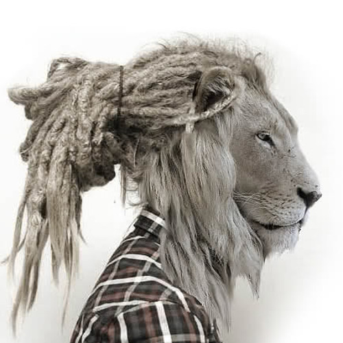 zered's avatar
