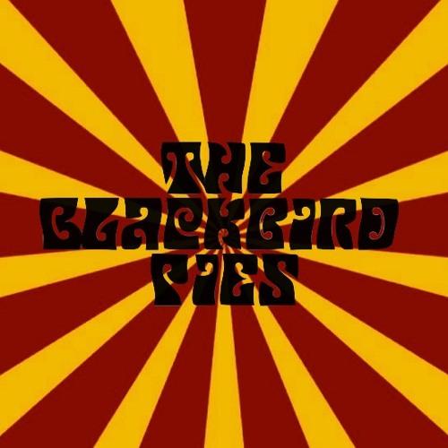 The Blackbird Pies's avatar