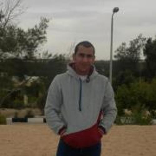 Mostafa EL-Ajami's avatar
