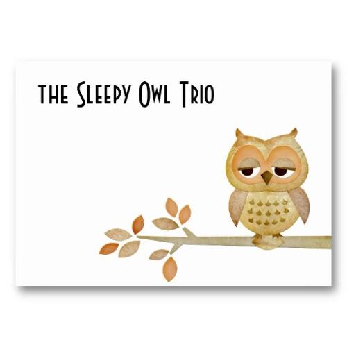 The Sleepy Owl Trio's avatar