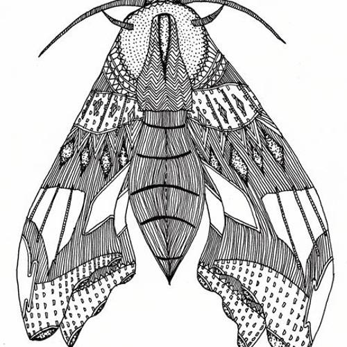 Dykta's avatar