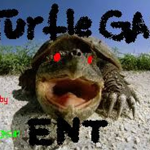 TURTLE GANG ENT's avatar