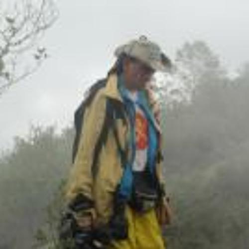 Jorge Tellez 7's avatar