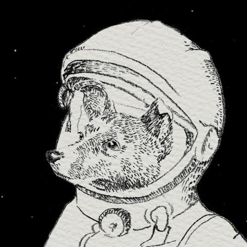 LaikaSuns's avatar