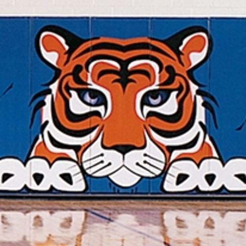 Tiger Phong's avatar