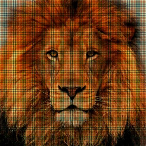Mofffffflar's avatar