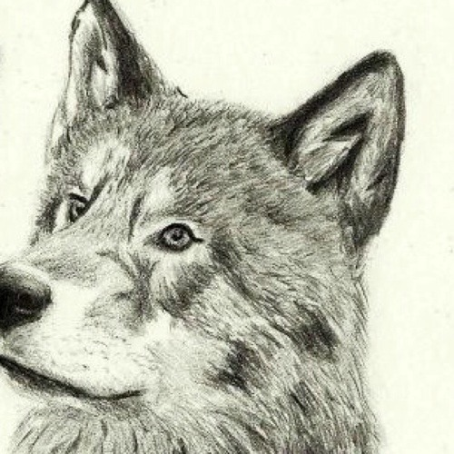 KIRIN2's avatar