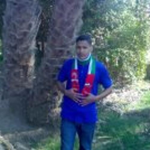 Mohamed Gamal 113's avatar