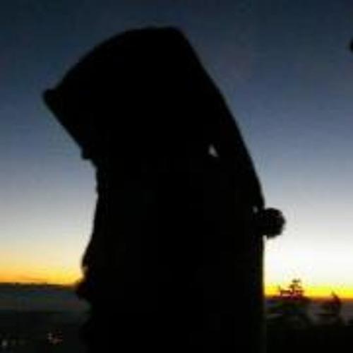Dominik Pulfer's avatar