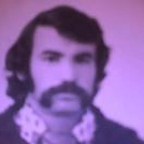 Semen  Karaush's avatar