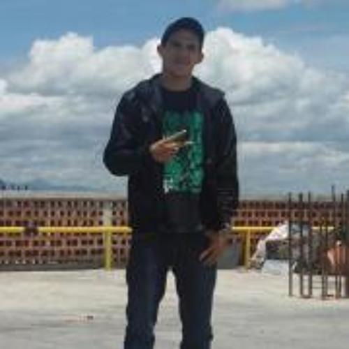 Ronald Sequera Fenix's avatar