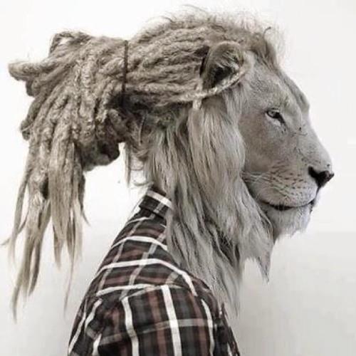 Gusibon's avatar
