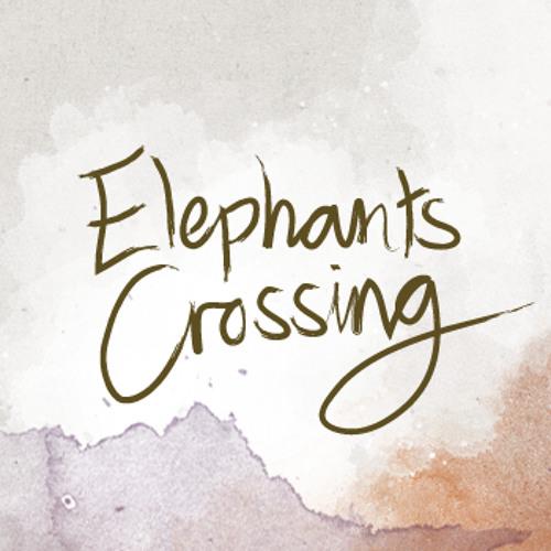 Elephants Crossing's avatar