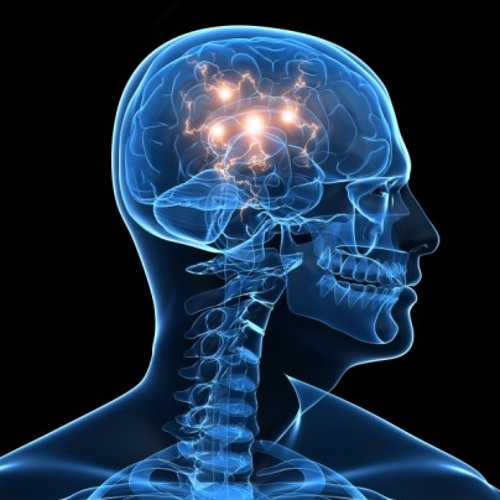 Liquid-Brain's avatar