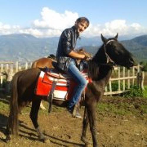 Hayk Mirzababyan's avatar