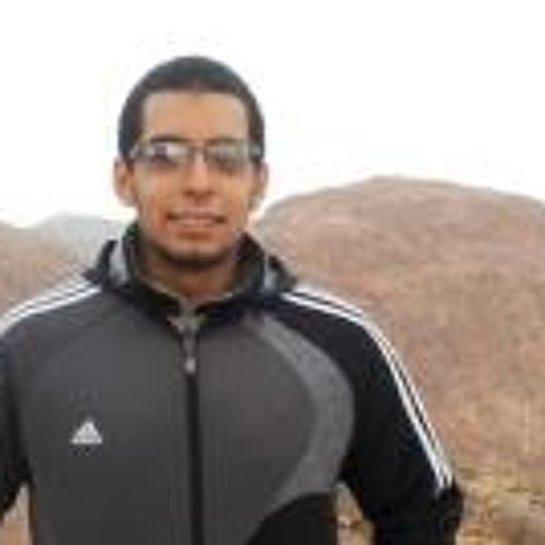 Mahmoud Mostafa 17's avatar