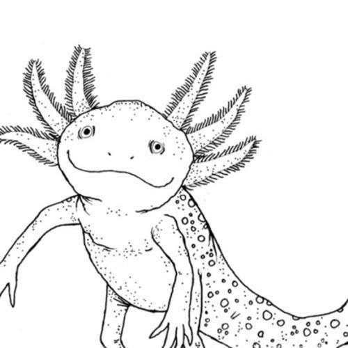 SLIPSckm's avatar