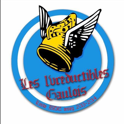 Ivreductibles Gaulois's avatar