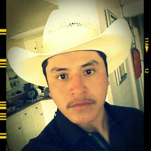 hidalgozacatecas's avatar