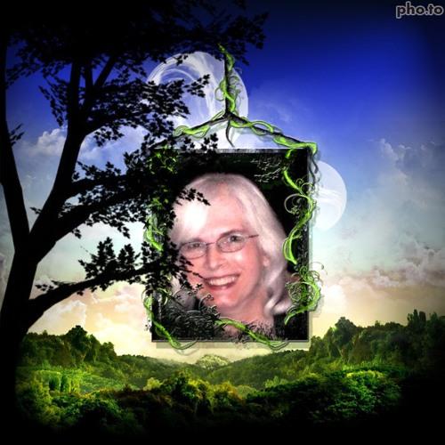 Viv Meredith's avatar