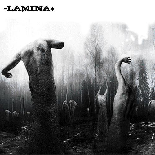 [-LAMINA+]'s avatar