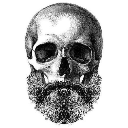 Filippo Querci's avatar