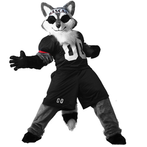 Rascal the Raccoon's avatar